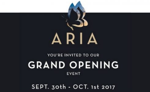 Seeno Homes Aria Grand Opening