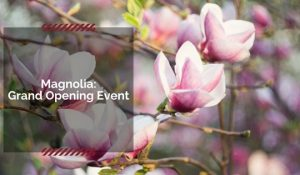 Magnolia in Brentwood grand opening